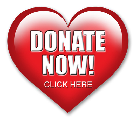 donate-now-click-here-button